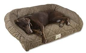 dog beds everything you need to know the smart dog guide