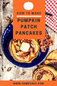 Shady Lane Farm Pumpkin Patch by 21 Best Halloween Treats Images On Pinterest Halloween Recipe