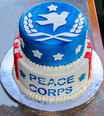 My sister made a cake for my going away party peacecorps