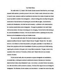 Tortilla Curtain Quote Analysis by Tc Boyle The Tortilla Curtain Short Summary Scandlecandle Com