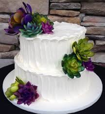 Rustic Iced Succulent Themed Two Tier Wedding Cake Simple And