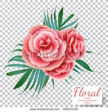 Vector Pink Rose On A Transparent Background Flower Bouquet Decorative Vintage Flowers And Leaves