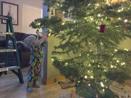 Christmas Tree Disposal New York City by 100 Christmas Tree Removal Christmas Tree Recycling U2013