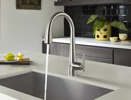 Pfister Pasadena Pull Down Kitchen Faucet by Pfister Gt529 Els Lita Single Handle Pull Down Faucet With React