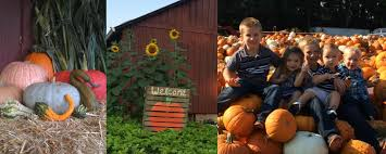 Portland Pumpkin Patches Oregon by U Pick Pumpkin Patch Lee Farms In Tualatin Or