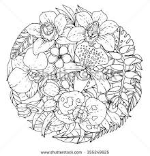 Tropical Flowers Set Coloring Book Page Hand Drawn Illustration All Elements Are