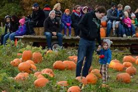 Kent Ohio Pumpkin Patches by Pickering Hill Farms Serves Avon Provides Fall Fun