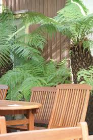 Outdoor Furniture | Russells Garden Centre Stanmer House Wedding Park Brighton Sussex Manor Barn Gardens Bexhill East Sussex Uk Stock Photo Royalty The English Wine Centre Oak And Green Lodge Best River Kate Toms Wedding Venue Berwick Hitchedcouk Wines Garden Canopies Walkways Community News Tates Of Bybrook Fordingbridge Plc Bonsai Groups Display At South Downs Gardens Great Dixter By Christopher Lloyd