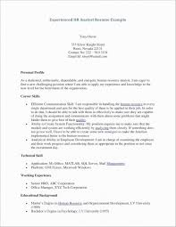 Technical Writer Resume Sample Beautiful Good Writing Examples Ox86 Documentaries For