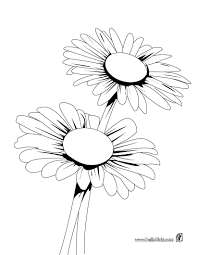 Daisy Bunch Coloring Page