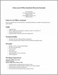Basic Resume Examples For Highschool Students Beginners