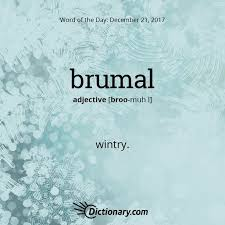 It Is From The Classical Latin Word Brumalis Meaning Winter Bruma Shortest Day Solstice An English
