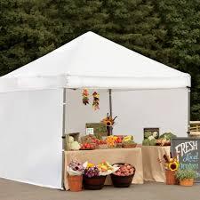 Costco UK Activa 3 x 3m 10 x 10ft Instant Canopy £169 99