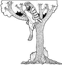 Zacchaeus On The Tree Jesus Coloring Page