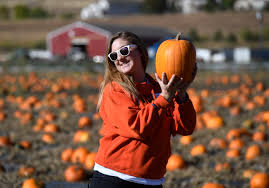 Local Pumpkin Patches Dayton Ohio by Keep The Family Busy At Denver Botanic Gardens U0027 Chatfield Farms