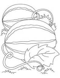 Strawberry Plant Clipart Black And White · Watermelon Drawing Coloring Coloring Pages