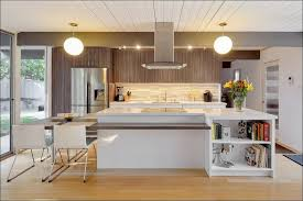KitchenModern Contemporary Kitchen Cabinets For Sale Decor By Design Modern