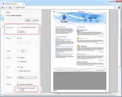 Chrome Print Preview Wnd Options