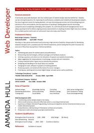 Web Design Resume Insurance Examples