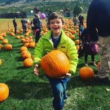 Pumpkin Patch In Colorado Springs Co 2013 by 9 Fall Festivals In Summit County Outthere Colorado