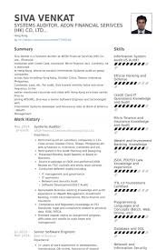 Auditor Resume Examples 11