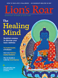 Health And The Basic Wellness That Transcends Them A Profile Of Buddhist Teacher Robert Thurman Teachings On Facing Lifes Challenges