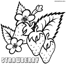 Strawberries Box Coloring Sheet Strawberry Leaves