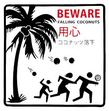 Death By Coconut - Wikipedia