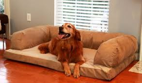 Amazon NEW Beasley s Couch Dog Bed Extra 34
