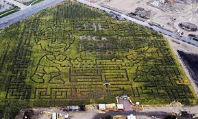 Pumpkin Patch Utah South Jordan by To Be Haunted Or Not To Be Haunted Halloween Attractions Around