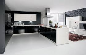 21 White Kitchen Cabinets Ideas 21 Captivating Big Spacious Kitchen Design Ideas