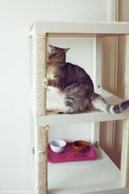 12 Extraordinary Cat Trees You Can Make Yourself