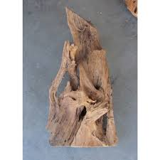 Driftwood Christmas Trees Sydney by Aquarium Driftwood Reptile Wood Amazing Amazon