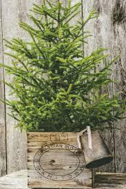 Evergleam Aluminum Christmas Tree Instructions by 307 Best Christmas Trees Images On Pinterest Christmas Time