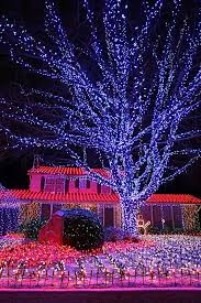 Twinkling Christmas Tree Lights Canada by 196 Best Christmas Lights Images On Pinterest Christmas Lights