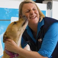 Pet Store Franchise Opportunities | Careers | PETstock Dog Carriers Cages Travel Crates Bpacks Petstock Chain Pet Stores Melbourne Dog Dictionary Shop Warehouse Buy Supplies Online Petbarn Reptile Heating Lighting Puffydoggz Rescue Home Facebook The Bellarine Peninsula Wedding Venues Ivory Tribe Waurn Ponds Gym Snap Fitness 247 Blog Posts Mornington Yacht Club Official Site Best Friends Supercentre Big Foods