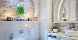 Plants For Bathroom Counter by Ask Wet U0026 Forget Bathroom Plants That Thrive With Or Without