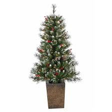 Plantable Christmas Trees For Sale by Table Top Christmas Trees Small Christmas Trees Potted