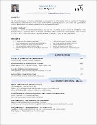 Resume Sample Short And Best Ideas 6