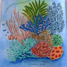 My Ocean On Book By Milliemarotta Inspirational Coloring Colouring Reinoanimalolivro