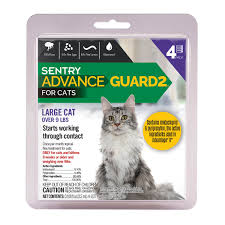 flea treatment for cats sentry advance guard 2 large cat 9 lbs 4 count s pet