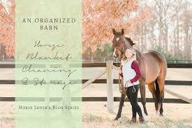 Best Horse Shedding Blade by Catherine Crane Photographyhorse Blanket Cleaning U0026 Storage