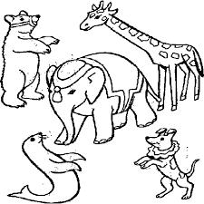 DIBUJOS DE ANIMALES Para Colorear Imprimir Y Pintar