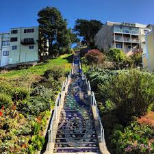 16th Avenue Tiled Steps Address by Beautiful Mosaic Stairs In Sf Great Workout And Makes For