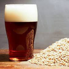 Smashed Pumpkin Beer Recipe by Homebrew Library Northern Brewer