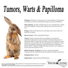 young living essential oils for rabbits tumors warts papilloma