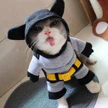 cat batman costume popular cat batman costume buy cheap cat batman costume lots from