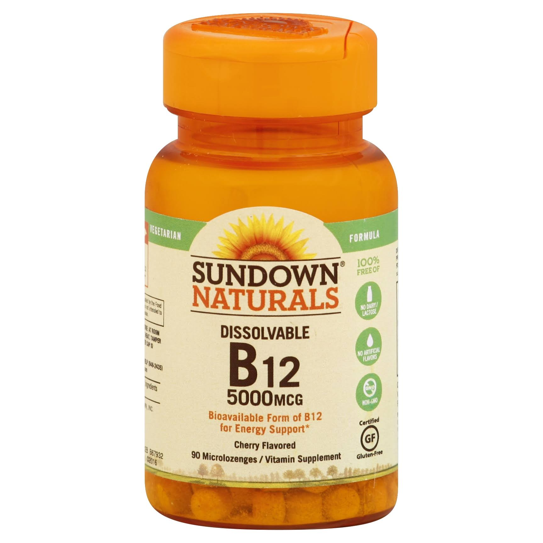 Sundown Naturals Vitamin B12 - 5000 mcg, 90 ct