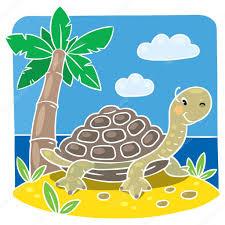 Dibujos Para Colorear Tortugas Dibujoscolorear123 Com