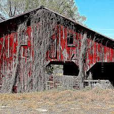 Red Shed Goldsboro Nc by Kevin Hill U0027s Profile Goldsboro Nc Us Pixoto